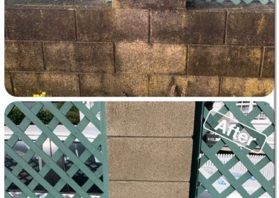 Before and after of a concrete brick wall with trellaced windows that has been cleaned of mould